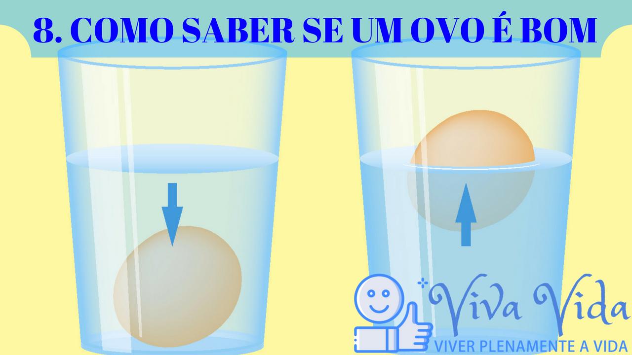 8. COMO SABER SE UM OVO É BOM - Viva Vida